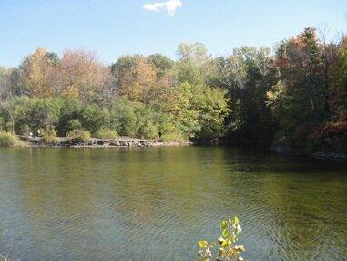 angrignon parc pond
