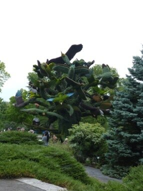 arbres aux oiseaux - bird tree