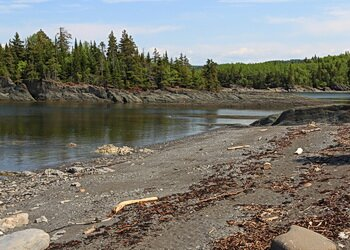 destruction along the st lawrence shores