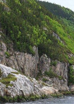 fjord greenhills
