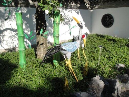 birds from china