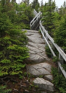 ladder path saguenay