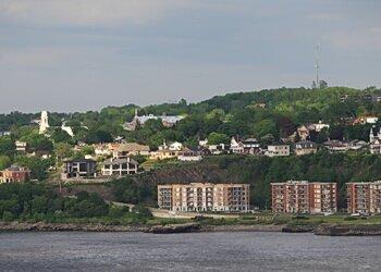 levis city
