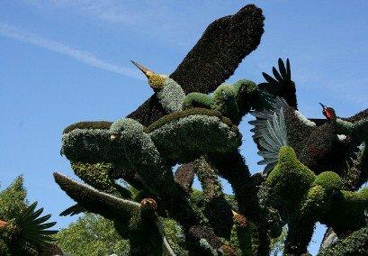 mosaiculture birds