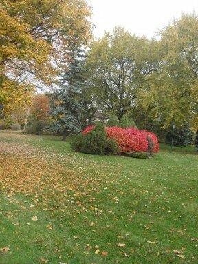 atholstan Park