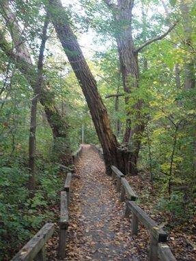 visitation par path