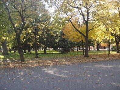 parc mullins