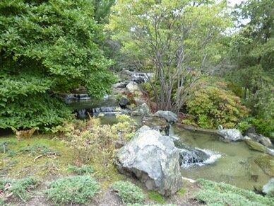stones japanese garden