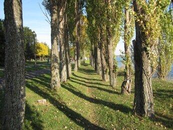 park's trail